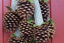 DIY: Pine cones / by Sonia McNeil
