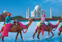 India / by Carolina de Heine