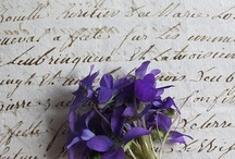 ~Fleur~ / by Daria Pew~a chaque oiseau son nid est beau