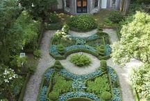 Gardening / by Linda Van Dyk