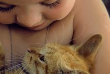 Pet / by Anke Lee
