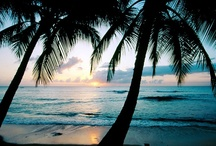 Paradise ... / by Natosha Buchanan