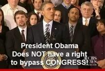 OMG ~ Obama Must Go! / by Cynthia Macri