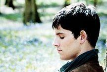 Merlin / by Hannah Kitzmann
