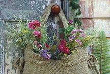 Gardening  / Planting, growing; tips...ideas, inspiration / by Emily Parr-Guerrero