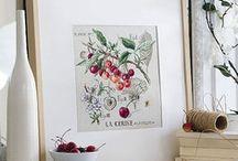 Embroidery and Stitching  / by Svetlana Shcherbakova