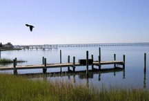 Missing  this... / I'm pining for my home on Kitty Duvall Creek, off the South River, in Annapolis MD / by Sam Corlis