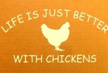 chickens / by Kirsten Becker