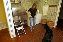Future Dog Room / Room for bathing, grooming and feeding the dogs. / by Kirsten Becker