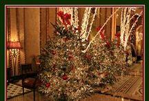 Christmas Tea / by Shey Sims