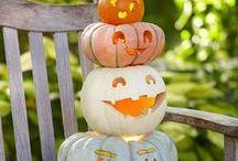 Halloween  / by Kate Mac Designs