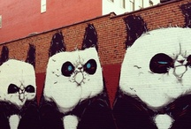 Street art / by Karina Grinebiter