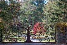 garden gates / by Frank Kirkegaard