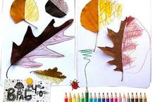 Homeschool   Nature Study / by Becky C