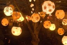 Halloween / by Carole Teague