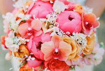 Bouquets / by Shana Johnson