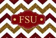 Go Noles! / by Donna Mullins