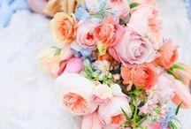 Floral / by Kyla Stefans