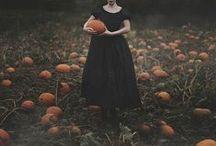 Pumpkins / by La Mandragola
