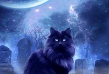 Halloween Hauntings / by Vernita Mitchell