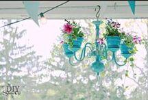 Casa Encanta Garden / by T Claire O'Connor