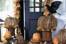 Thanksgiving/Fall / by Cassandra Avery