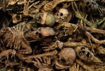 This is Halloween: Skeletons in my Closet / by Heather Angel