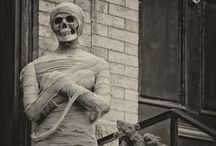This is Halloween: Are you my Mummy? / by Heather Angel
