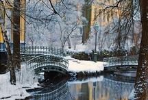 Winter Wonderland / by Bethany Proctor