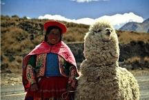 Como Se Llama / by Bethany Proctor