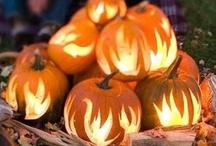 Halloween / by Kelly Alteneder