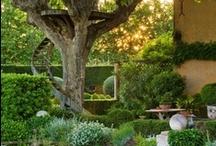 patio/garden / by The French Tangerine (jan vrana)