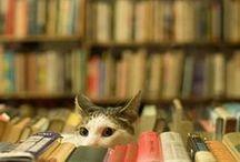 KittyKuri & fuZZY / by Marge Wickes