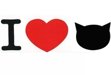 Crazy Cat Love / My love of cats  / by Heather Crate