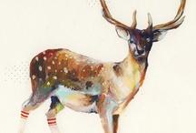 Art I like / by Joanna Boomer