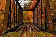 Autumn  / by Katherine Gruender