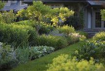 Gardens / by Elisabetta Pozzetti