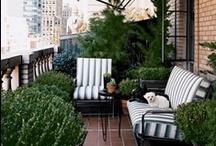 Patio & Garden / by Vicki Li