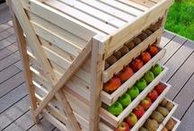 Preparedness / Food Storage / Survival / Self Sufficiency / by Karen Evans