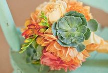 Homesperation / Pictorial inspiration for color combos and vignettes. / by Dani Manring