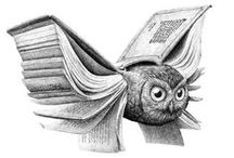 Owl. / by Sveta Russkaya