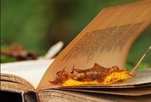 I Love Books / by Sherry Lochner
