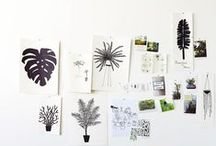 mood boards / a board of boards (mood boards and inspiration boards) / by Mary Jo Hoffman