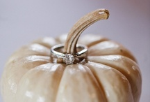 Wedding / Yes, my wedding has been and gone - but I love this stuff so I keep pinning! / by Meghan McCaige