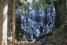 Hiking: PacNW / by Juli Michele