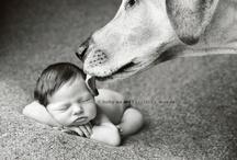 Cute babies 'n stuff / by Lauren Bell