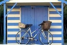 Bikes / by Nazrin Huseynzade