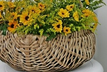 Baskets and crocks / Wonderful things from another time! / by Peggy Rice