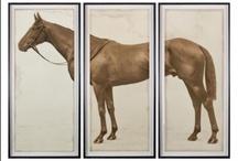 Horsey, horsey, horsey! / by Glenda McCoy