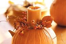 Thanksgiving / by Ziggygirl61